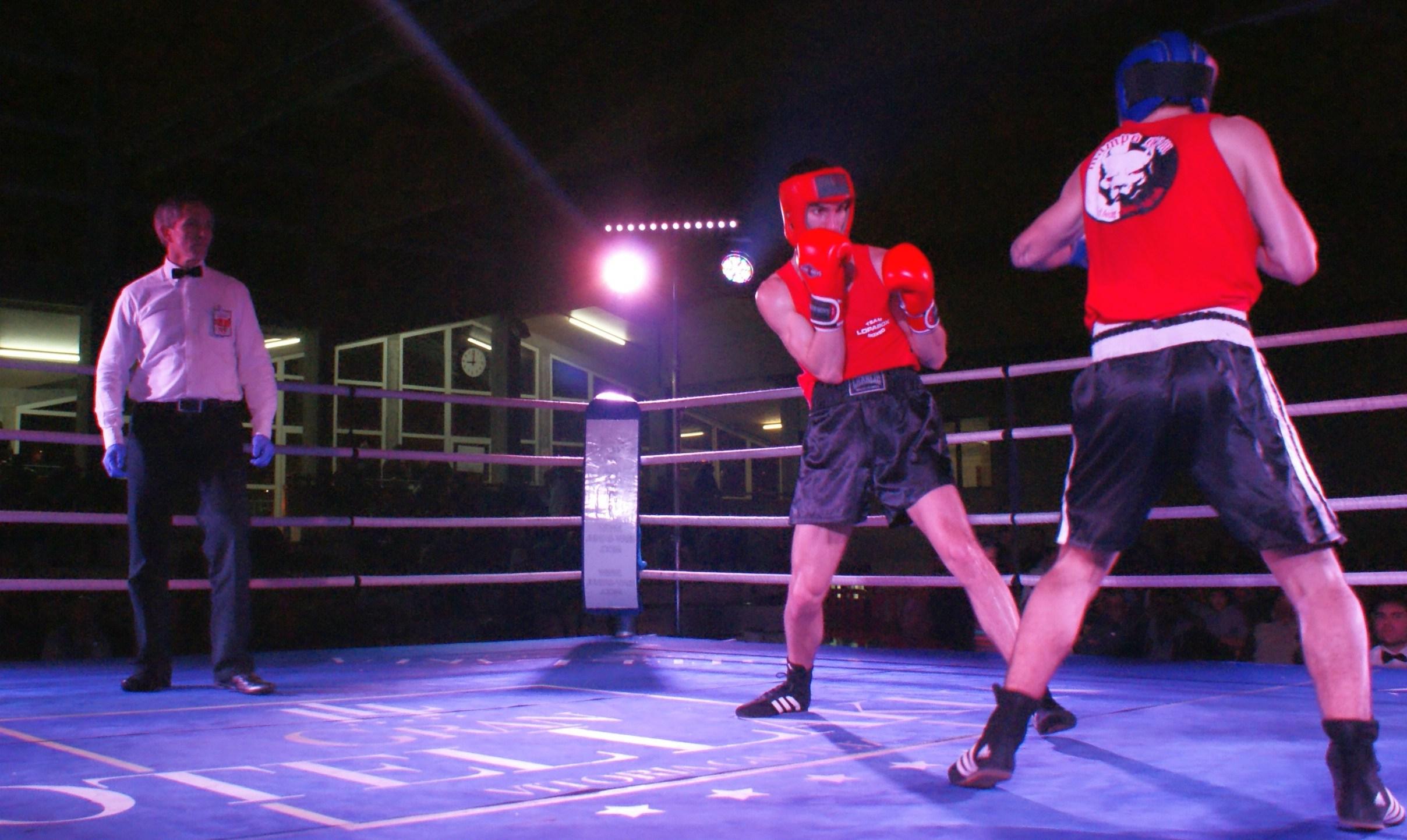Boxeo amateur, campeonatos de Bizkaia en Zamudio